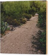 Ridge Trail No2 Wood Print