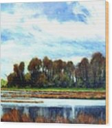 Ridgefield Refuge Early Fall Wood Print
