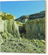 Rigid New Mexico Wood Print