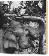 Riding The Elephant Wood Print