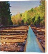 Riding The Rail Wood Print