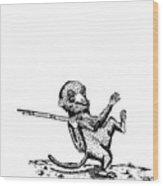 Rifle Monkey Wood Print