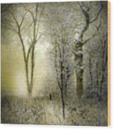 Rimy Forest Windy Daybreak By Laszlo Mednyanszky 1896 Wood Print