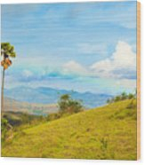 Rinca Island. Wood Print by MotHaiBaPhoto Prints