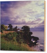 Rincon Lighthouse Puerto Rico Wood Print by George Oze