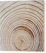 Rings Of A Tree Wood Print