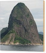 Rio De Janeiro IIi Wood Print