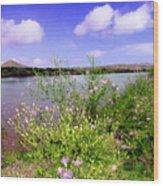 Rio Grande De Las Cruces Wood Print
