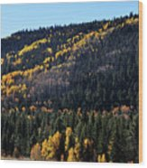 Rio Grande National Forest Wood Print