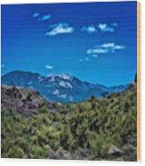 Rio Hondo Arroyo View Wood Print