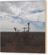 Rio Rancho New Mexico Wood Print