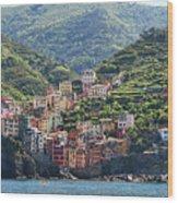 Riomaggiore 0576 Crop Wood Print