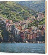 Riomaggiore 0577 Wood Print