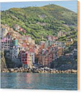 Riomaggiore 0582 Crop Wood Print