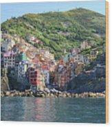 Riomaggiore 0583 B Wood Print