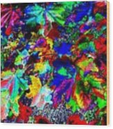 Riot Of Color Wood Print