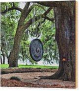 Rip Van Winkle Gardens I  Wood Print
