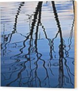 Rippled Reflections Wood Print
