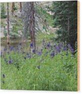 Ripples Behind Wildflowers Wood Print