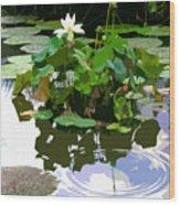 Ripples On The Lotus Pond Wood Print