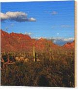 Rising Moon In Arizona Wood Print