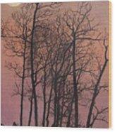 Rising Of The Moon  Wood Print
