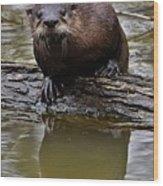 Rive Otter Wood Print