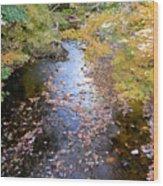 River 3 Wood Print