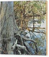 River Art Wood Print