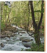 River At Greenbrier Wood Print