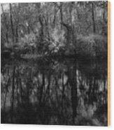 River Bank Palmetto Wood Print