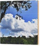 River Banks Wood Print