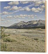 River Bed In Denali National Park Wood Print
