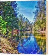 River Bend View Wood Print