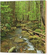 River Crossing On The Maryland Appalachian Trail Wood Print