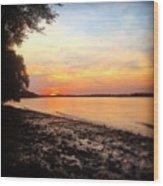 River Danube Wood Print