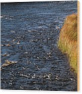 River Edge Wood Print