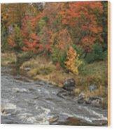 River Foliage Wood Print