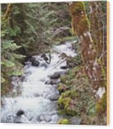 River For Your Thoughts Wood Print