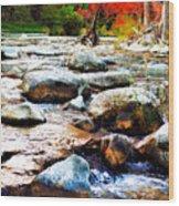 River Gone Wood Print