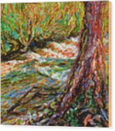 River Hafren In September Wood Print