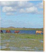 River Horses Horizon Wood Print