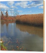 River Hudson Autumn Creek Wood Print