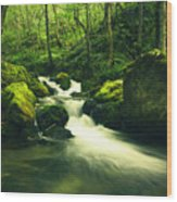 River In A Green Forest Wood Print