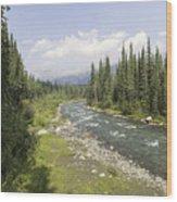 River In Denali National Park Wood Print