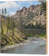 River In Shoshone Wood Print