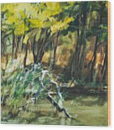 River In Summer Wood Print