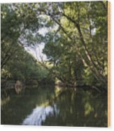 River In The Jungle. Wood Print