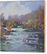 River Jewels Wood Print