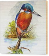 River Kingfisher Wood Print